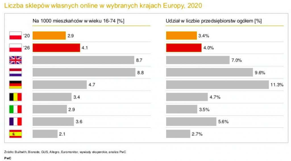 Polski eCommerce 2021 udzial firm wrynku -